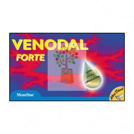 VENODAL FORTE 10 VIALES ESPADIET
